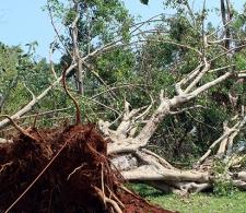 Afectaciones del huracán Irma en Cárdenas