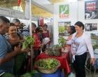 Los trabajadores del CCRD-C promocionan los productos de la Finca El Retiro
