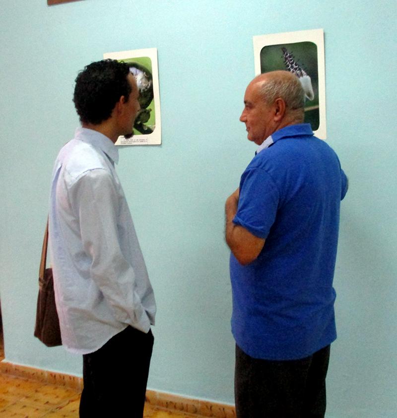 Exposición Traigo la estrella y la paloma, dedicada a José Martí