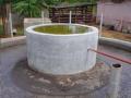 planta biogas2