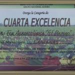 cuartaexcelencia2015