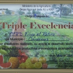 tripleexcelencia2013